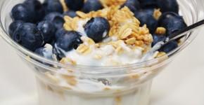 Blue Berry Yogurt